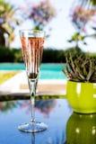 Exponeringsglas av champagne Royaltyfri Bild