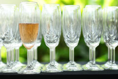 Exponeringsglas av champagne i deltagare Royaltyfria Foton