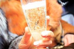Exponeringsglas av champagne med bubblor i händerna av en flicka i ett pälslag Arkivbild