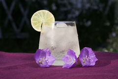 Exponeringsglas av den kalla nya drinken Royaltyfria Foton