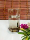 Exponeringsglas av Drink/vatten med blommor Royaltyfri Fotografi