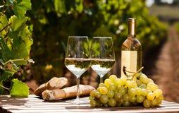 Exponeringsglas av druvor och br?d f?r vitt vin mogna p? tabellen i ving?rd arkivfoton