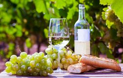 Exponeringsglas av druvor och br?d f?r vitt vin mogna p? tabellen i ving?rd arkivbild