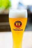 Exponeringsglas av Erdinger öl royaltyfria bilder