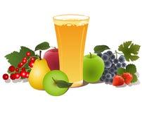 Exponeringsglas av fruktfruktsaft Royaltyfria Foton