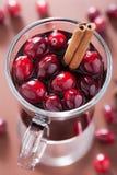 Exponeringsglas av funderat vin med tranbäret och kryddor, vinterdrink Royaltyfria Bilder