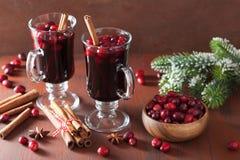 Exponeringsglas av funderat vin med tranbäret och kryddor, vinterdrink Arkivfoto