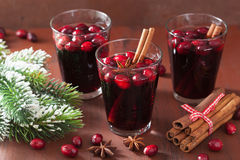 Exponeringsglas av funderat vin med tranbäret och kryddor, vinterdrink Arkivbild