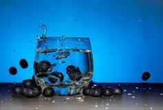 Exponeringsglas av gin med blåbäret Arkivfoton
