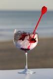 Exponeringsglas av gin med kryddor Fotografering för Bildbyråer