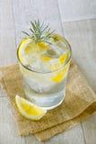 Exponeringsglas av gin och tonic med is och citronen royaltyfri bild