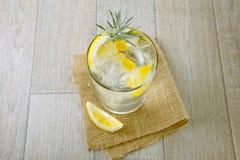 Exponeringsglas av gin och tonic med is och citronen fotografering för bildbyråer