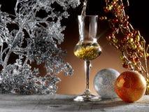 Exponeringsglas av grappa Royaltyfri Bild