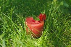 Exponeringsglas av jordgubbesmoothien i gräset med mintkaramellen royaltyfria foton