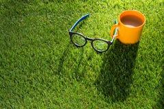 exponeringsglas av kaffe och exponeringsglas på grönt gräs i morgonen Fotografering för Bildbyråer