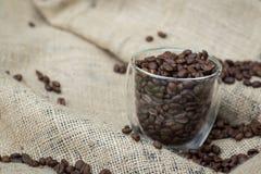 Exponeringsglas av kaffebönor Royaltyfri Foto