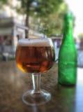 Exponeringsglas av kallt öl Arkivfoto