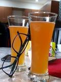 Exponeringsglas av kylt öl Fotografering för Bildbyråer