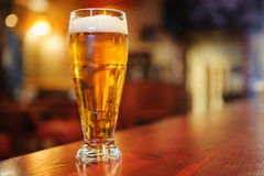 Exponeringsglas av öl på stången Royaltyfria Bilder
