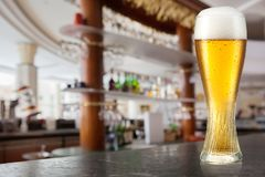 Exponeringsglas av ljust öl i en bar royaltyfria foton