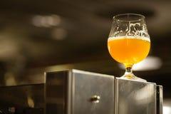 Exponeringsglas av ljust öl i ett bryggeri Arkivbild