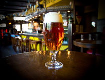 Exponeringsglas av ljust öl på en bar royaltyfri bild