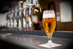 Exponeringsglas av ljust öl på en bar royaltyfria foton