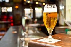 Exponeringsglas av ljust öl på en bar royaltyfria bilder