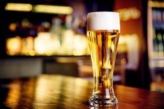 Exponeringsglas av ljust öl på en bar med bokehbakgrund royaltyfri fotografi