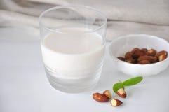Exponeringsglas av mandeln mjölkar på vit bakgrund arkivfoton