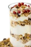 Exponeringsglas av mysli med frukter och yoghurt Fotografering för Bildbyråer