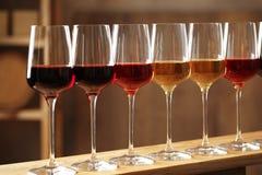Exponeringsglas av olika viner i k?llare fotografering för bildbyråer