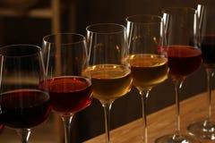 Exponeringsglas av olika viner i k?llare Dyr samling royaltyfria bilder