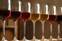 Exponeringsglas av olika viner mot suddig bakgrund royaltyfri fotografi