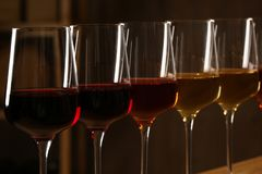 Exponeringsglas av olika viner mot suddig bakgrund Dyr samling royaltyfri fotografi