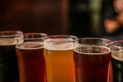 Exponeringsglas av olikt öl på den mörka bakgrundscloseupen arkivbild