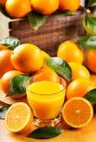 Exponeringsglas av orange fruktsaft med nya frukter Royaltyfri Fotografi