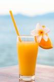 Exponeringsglas av orange fruktsaft som dekoreras med den tropiska plumeriablomman på stranden, lyxig semester för begrepp Arkivfoton