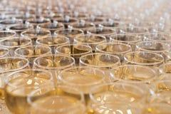 Exponeringsglas av rött och vitt vin Royaltyfri Bild