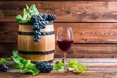 Exponeringsglas av rött vin i en träkällare arkivfoto