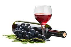Exponeringsglas av rött vin med flaskan och druvan Royaltyfria Foton