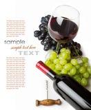 Exponeringsglas av rött vin med flaskan och druvor Royaltyfri Fotografi