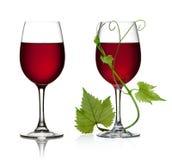Exponeringsglas av rött vin- och druvaleaves Royaltyfria Bilder