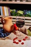 Exponeringsglas av rött vin och tillbringaren Royaltyfri Fotografi