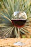 Exponeringsglas av rött vin på rottinggnäggandetabellen i trädgård på villaherrgård Tidig nedgångafton för hemtrevlig sommar Aute royaltyfri fotografi