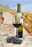 Exponeringsglas av rött vin och en buteljera på terrassen av vingården i Lav Arkivbilder
