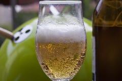 Exponeringsglas av skummande öl Fotografering för Bildbyråer