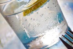 Exponeringsglas av sodavatten med citronen, closeup Royaltyfria Foton