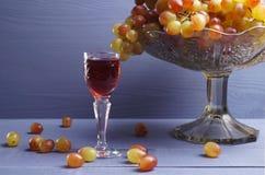 Exponeringsglas av ungt vin med druvor Royaltyfria Bilder