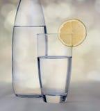 Exponeringsglas av vatten med citronen som är främst av vattenflaskan med bokehlodisar Royaltyfria Bilder